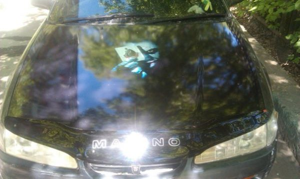 Наклейки на авто на лобовое стекло